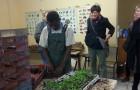 Vrtlarenje